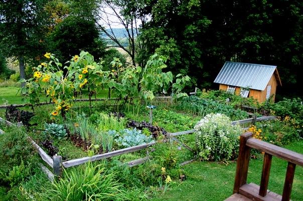 Ландшафтный дизайн огорода огород